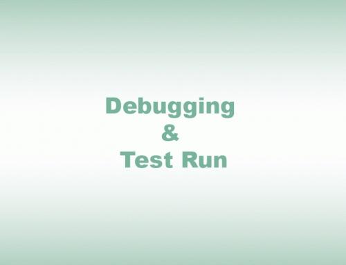 Debugging & Test Run